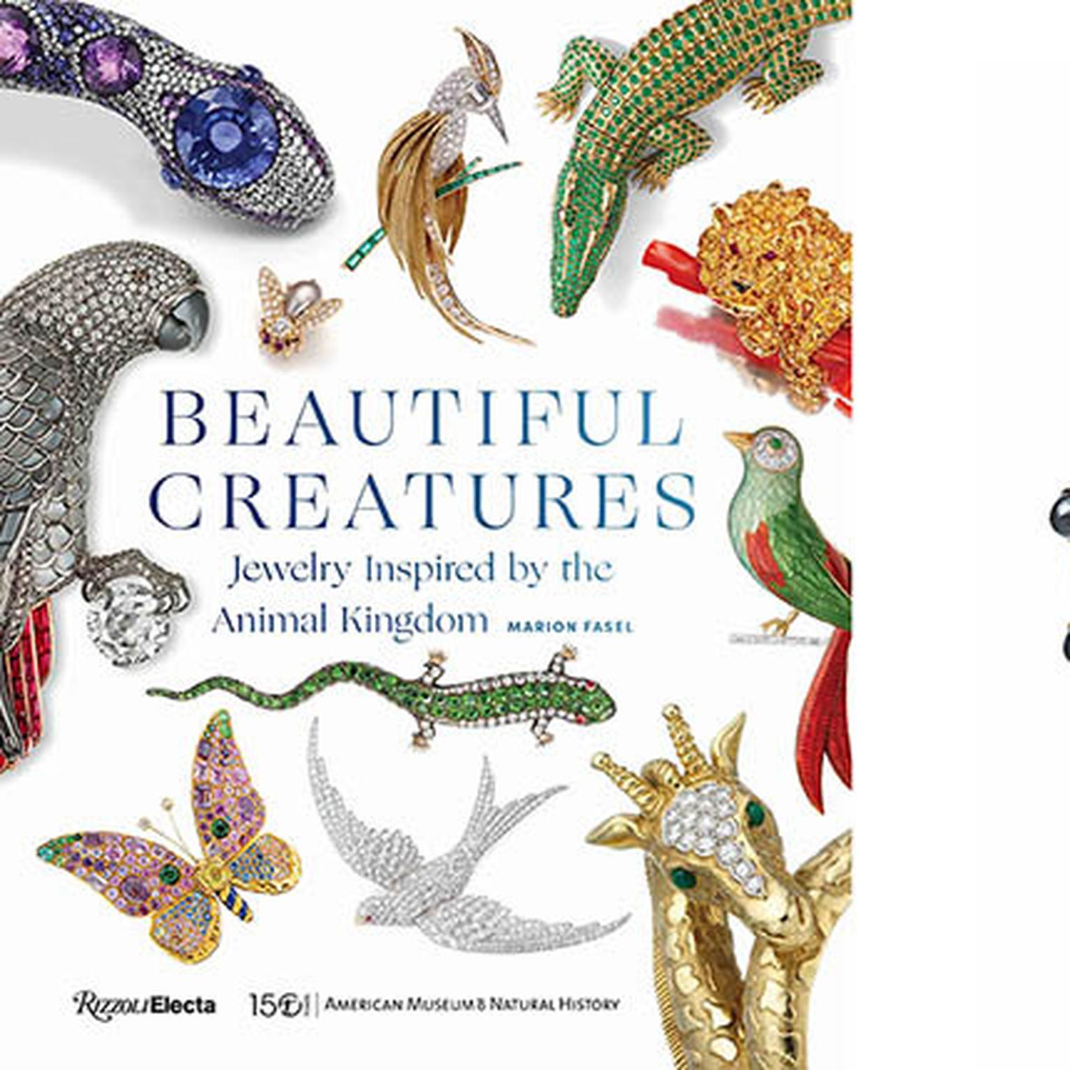 Beautiful Creatures, book by Marion Fasel