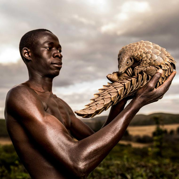 Pangolin Man by Adrian Steirn