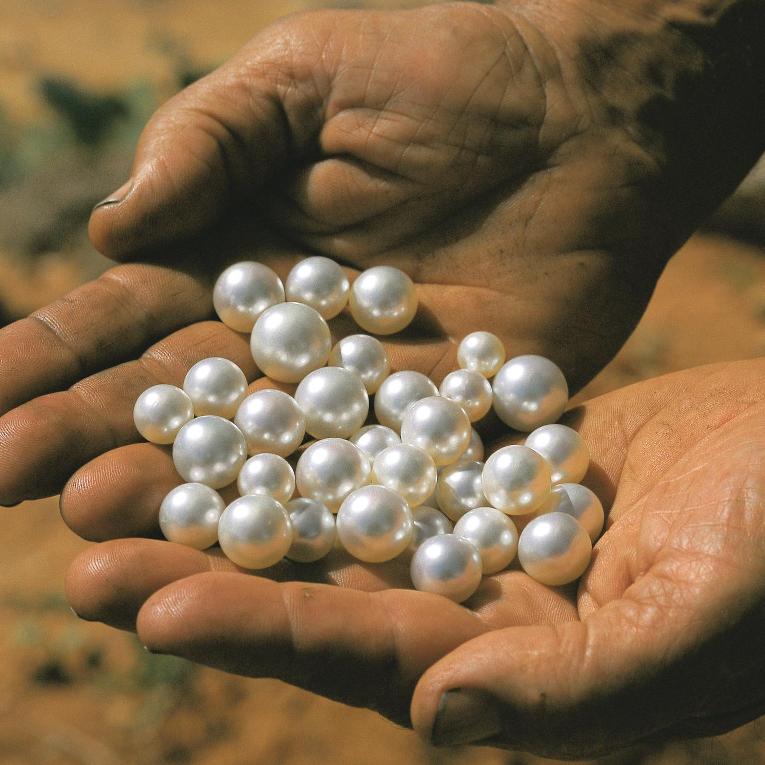 Autore loose natural pearls