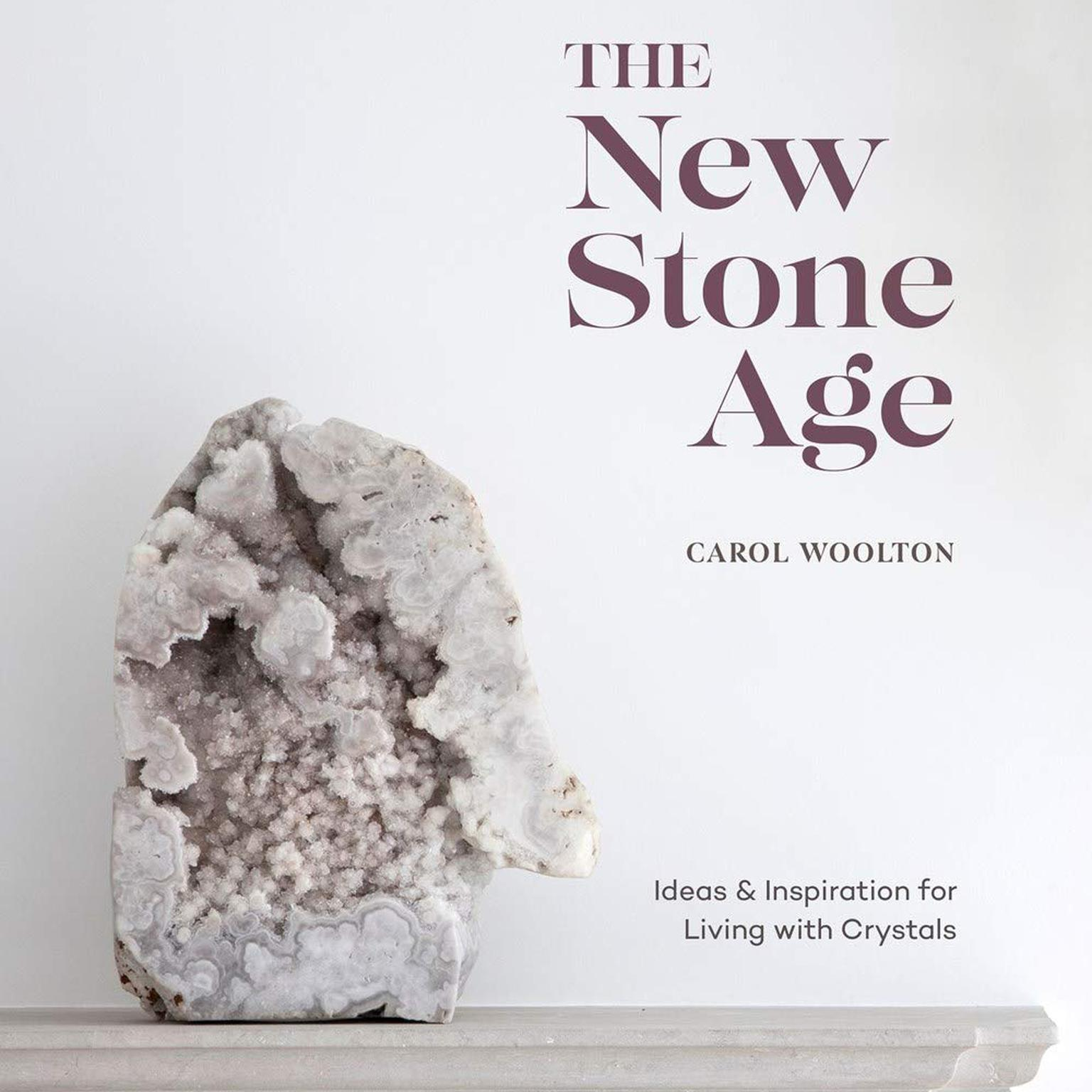 The New Stone Age by Carol Woolton