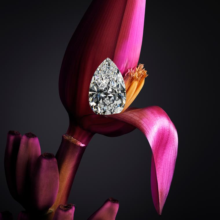 Chopard Garden of Kalahari pear-shape diamond
