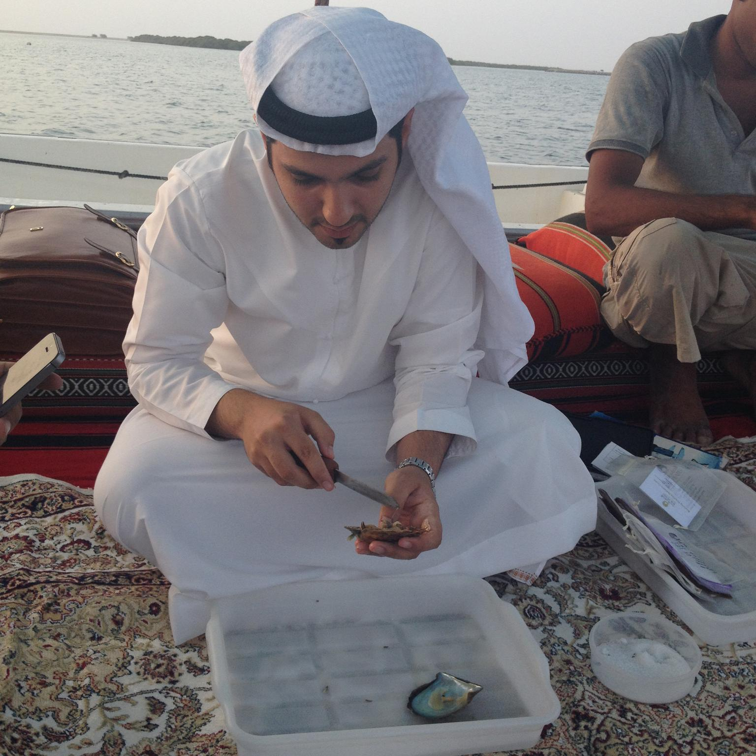 Arabian cultured pearl farming
