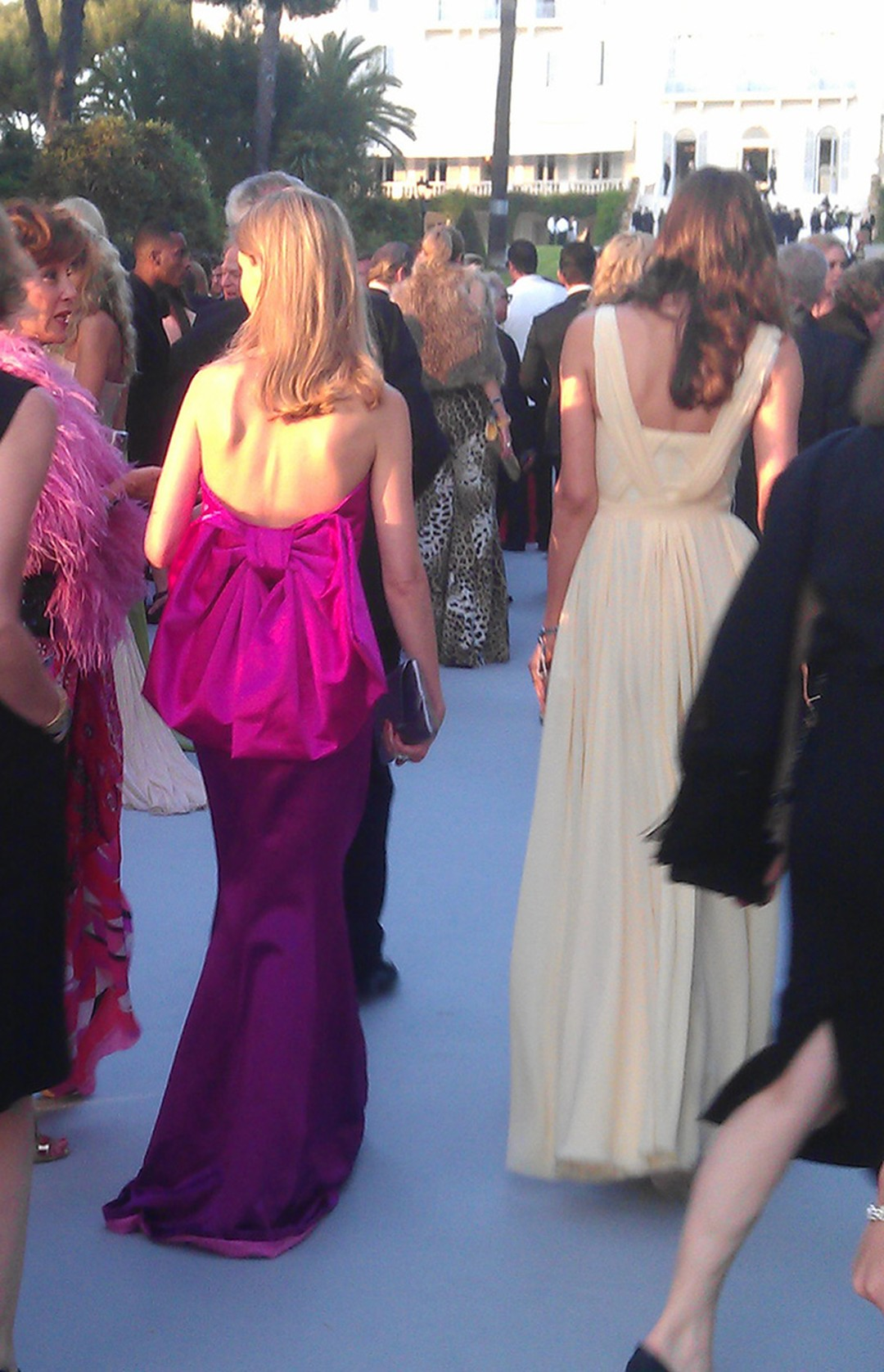 Beautiful-Gowns-and-ladies-at-AmfAR
