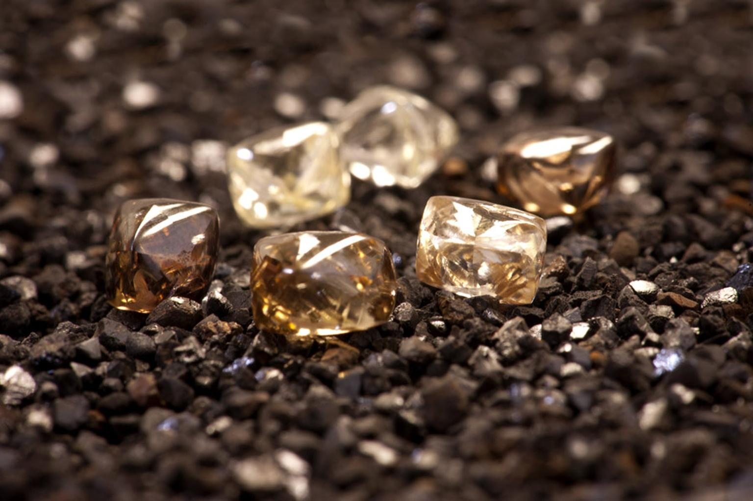 First-diamond-samples-from-the-Bunder-project-located-in-the-Bundelkhand-region-of-Madhya-Pradesh-India--NXPowerLite.jpg