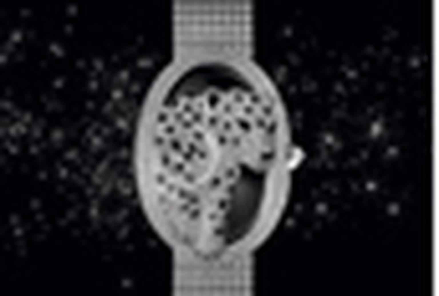 Diamond jewellery watches