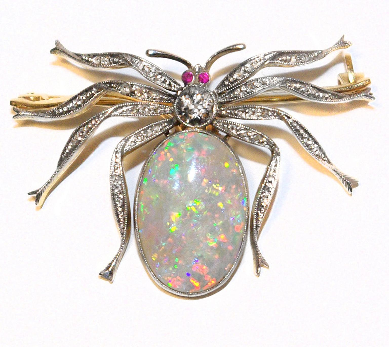 AntheaAGspiderbrooch
