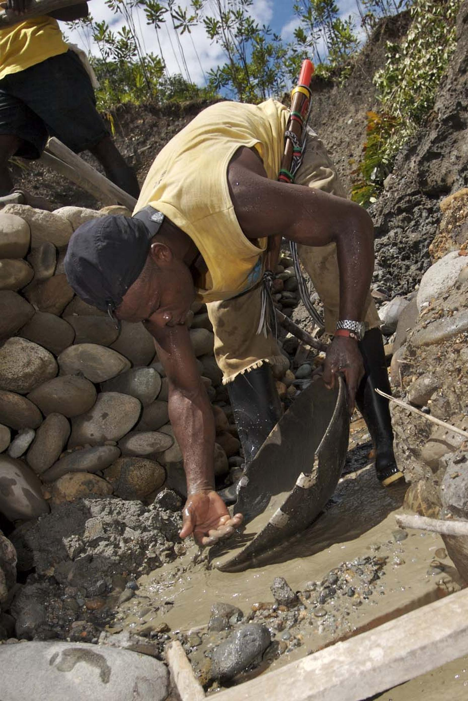 Panning for Fairtrade gold in banked trenches to reduce soil erosion