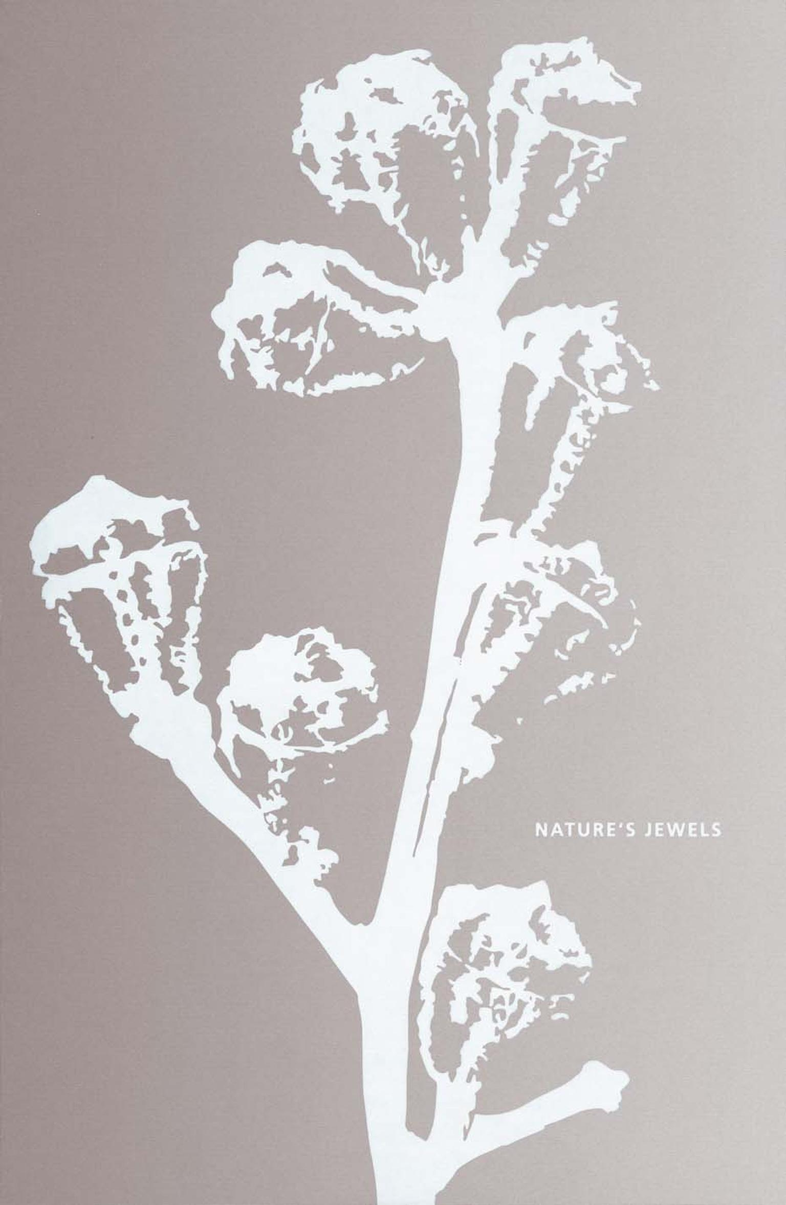 Hemmerle's new collection is accompanied by the publication of a new poetry book, titled 'Nature's Jewels', which pairs each creation with a poem