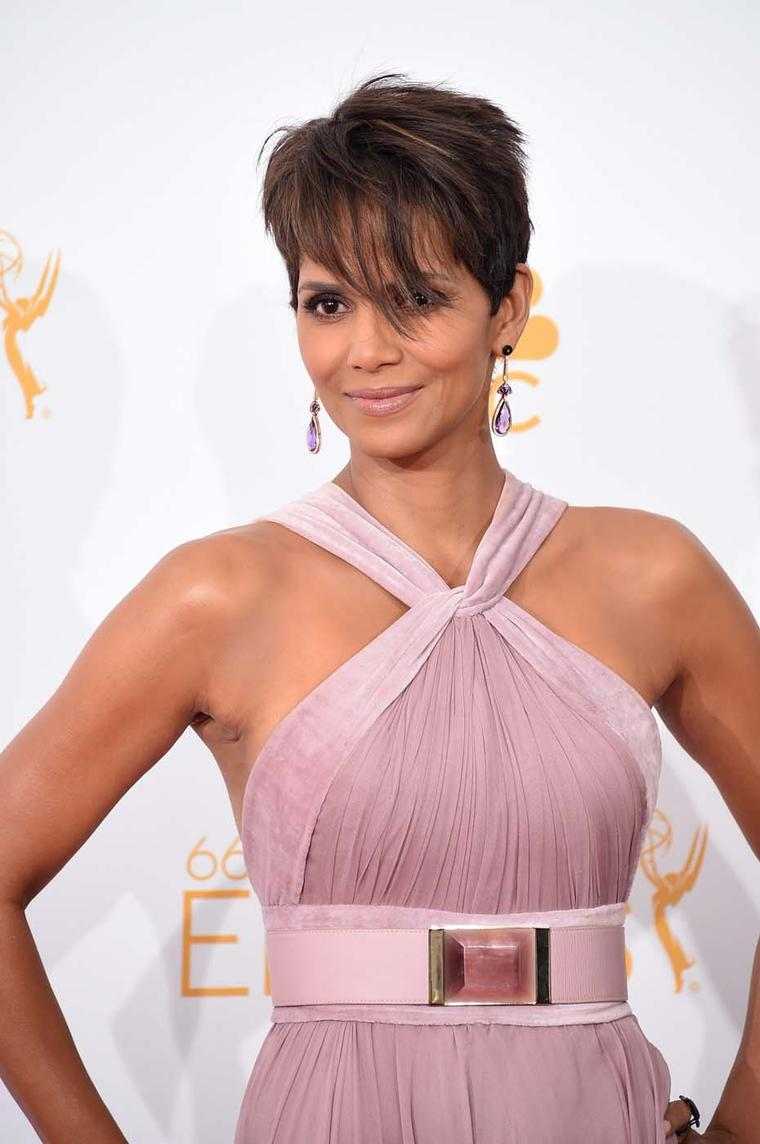 Halle Berry's Elie Saab dusty pink gown was perfectly matched by a pair of Doves earrings by Doron Paloma featuring amethyst and mother of pearl.