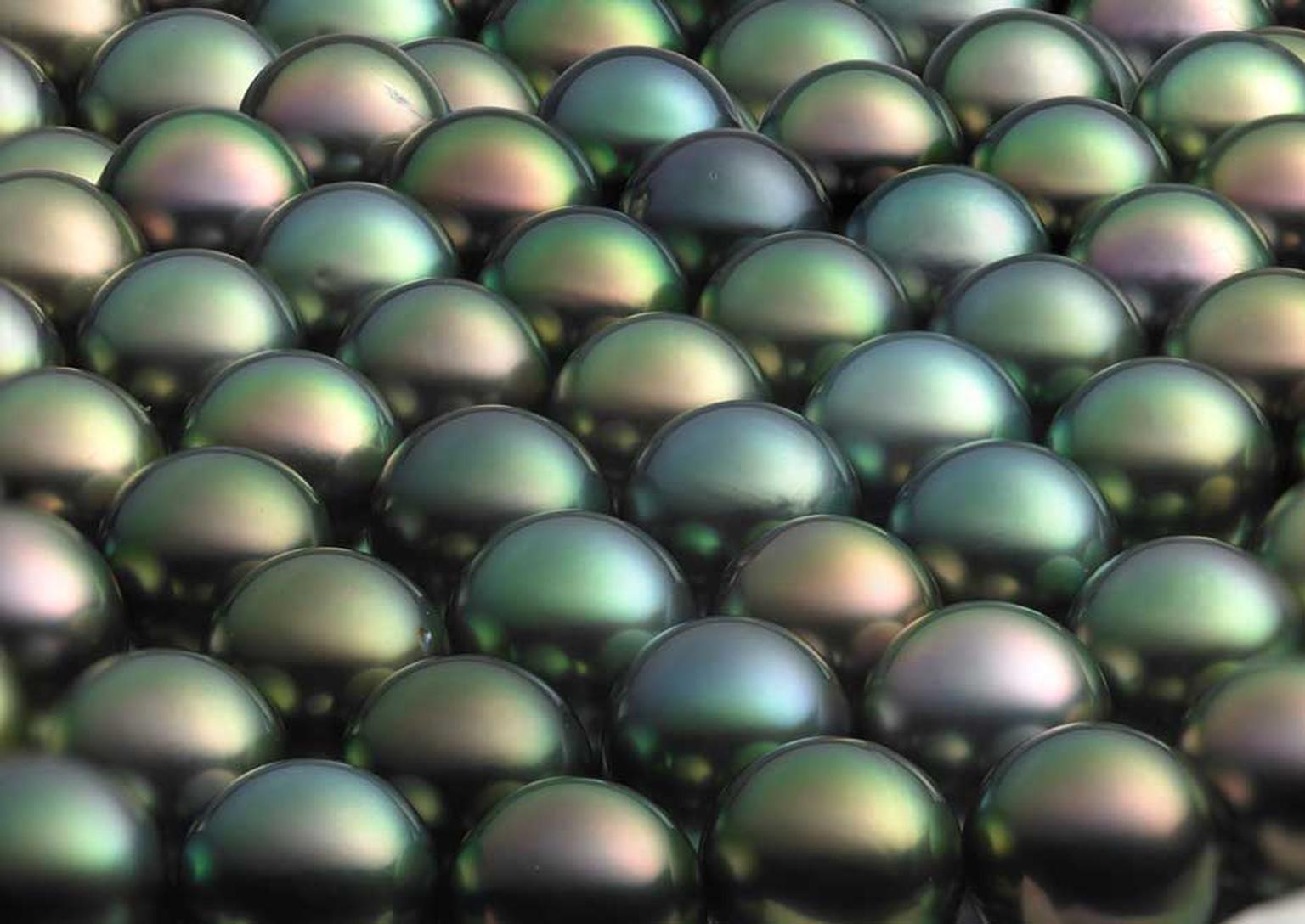 Winterson multi-coloured Tahitian pearls.