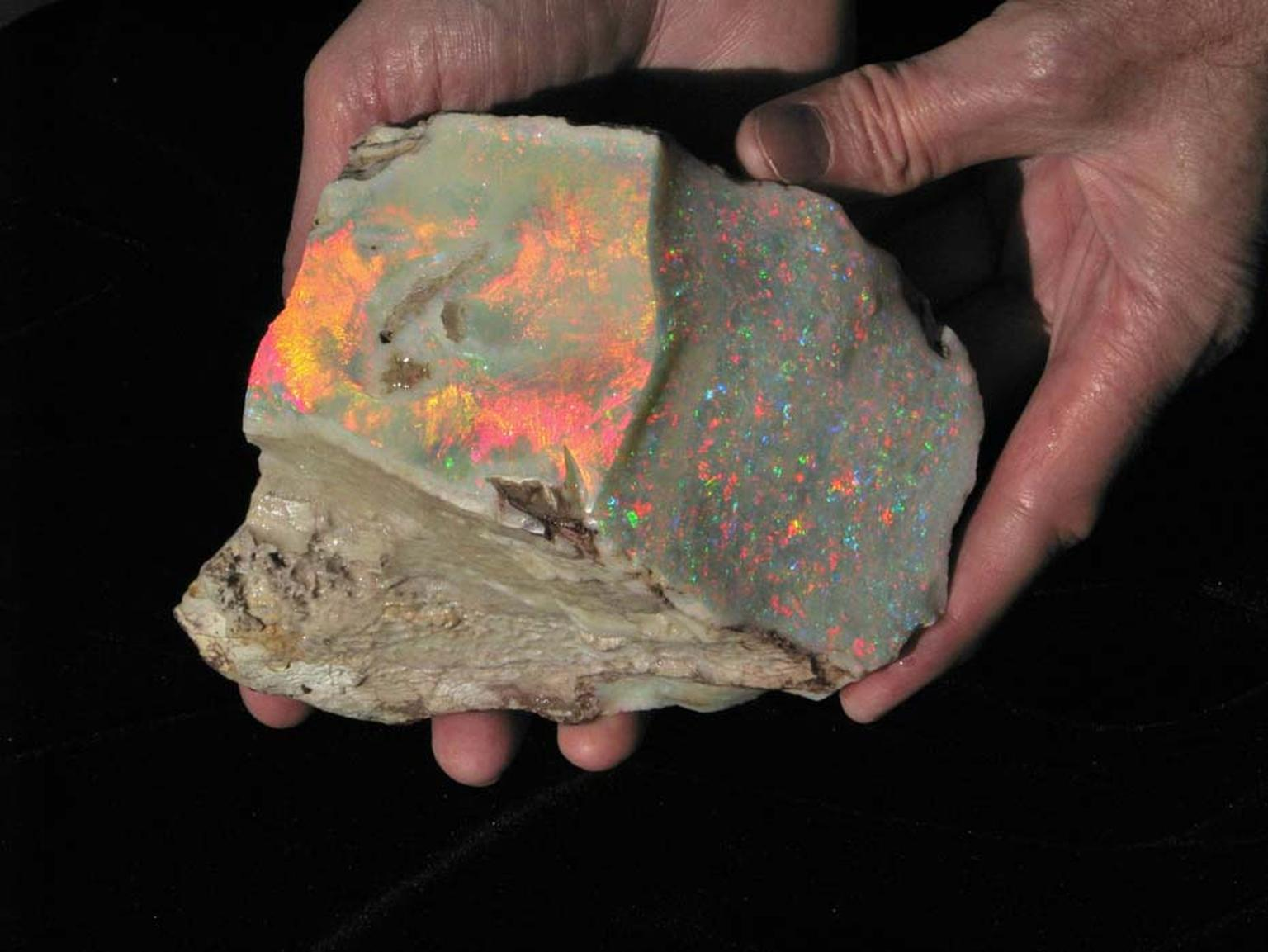 The Fire of Australia, discovered by the Bertram family in 1946, is the most valuable piece of rough light opal of its size in the world, weighing approximately 5,000 carats. Photo: By Ray Bartram and courtesy of the Bartram family.