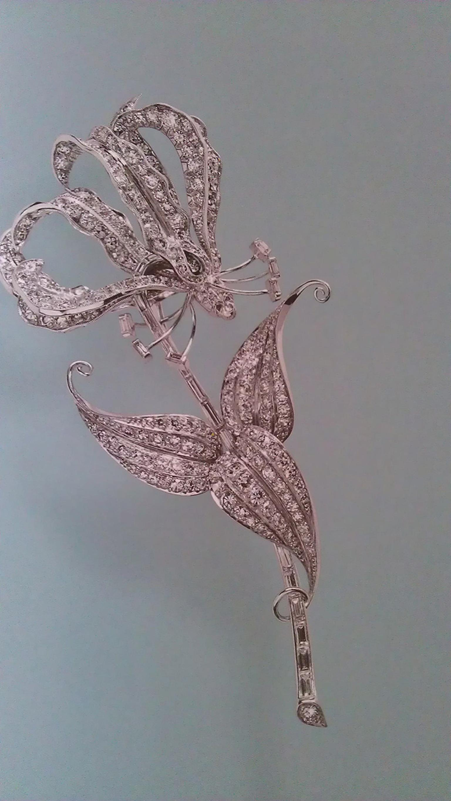 Flame Lily brooch belonging to the Queen