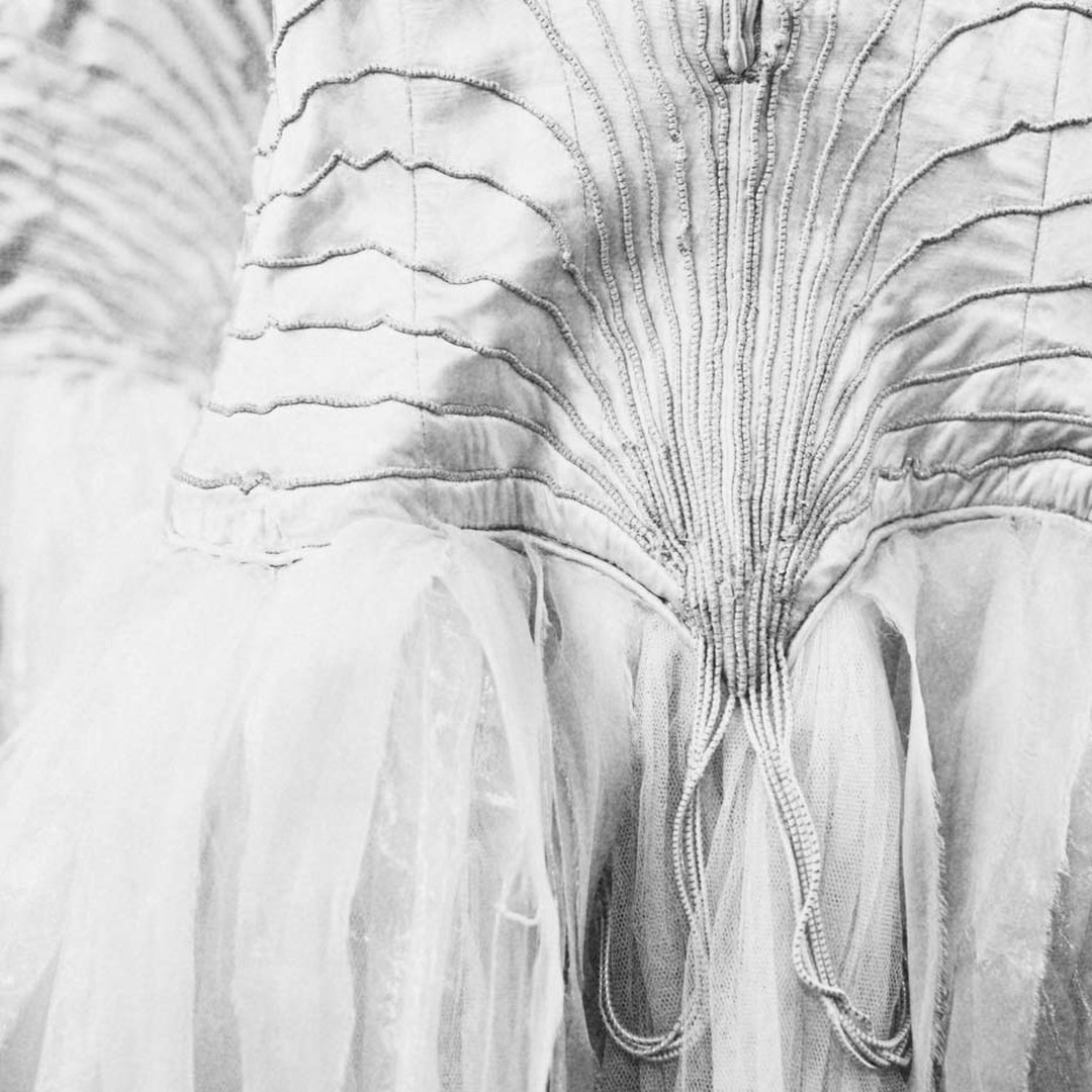 Silk and tulle costumes for the swans in Swan Lake. Image: Charlie Dailey
